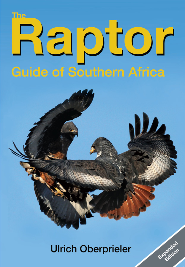 Raptor Guide - cover